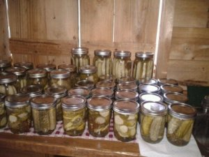 In August, we're in a pickle. We do all the canning.