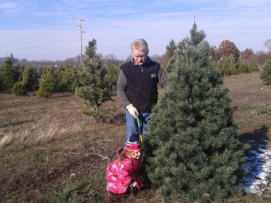 Ludek & Ella cut the Palova family Christmas tree at Horrocks Nursery