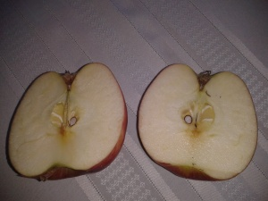 A healthy apple brings a healthy year