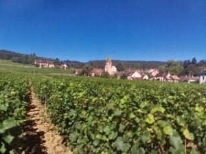 Wine villages in Burgundy.